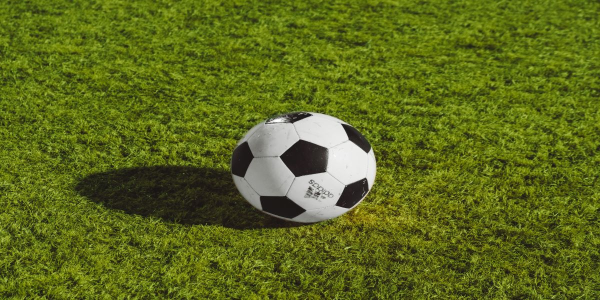 Black and white soccer ball sat on real greengrass.