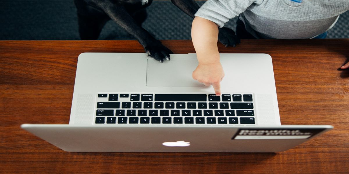 Photo of a silver laptop sitting on a low wooden table, facing away from the camera. Small child's right hand and small dog's right paw both reaching for the keyboard.