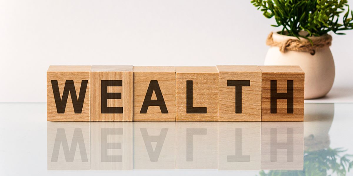 Wooden letter blocks, spelling the word 'wealth' in capital letters, on a shiny white surface, plant in the background.